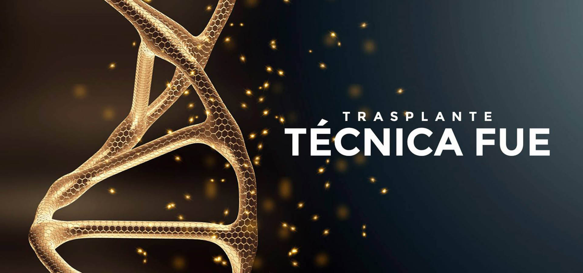Élite Medical Madrid Trasplante técnica FUE
