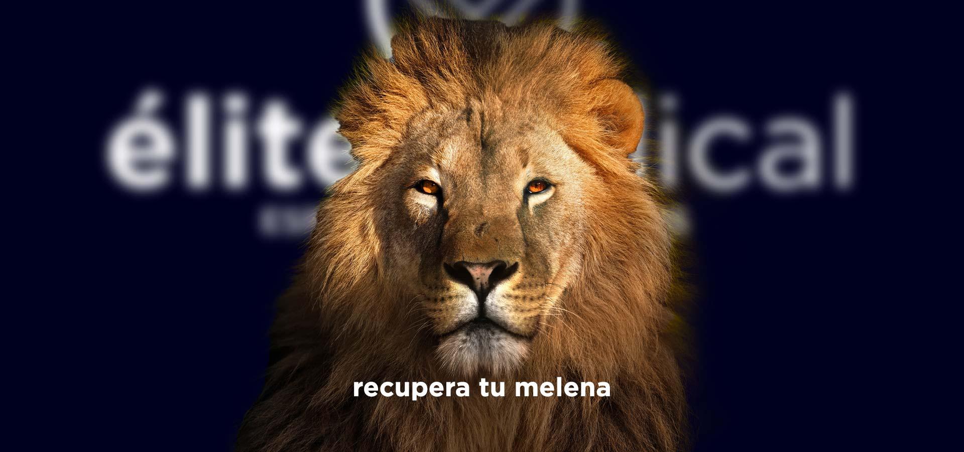 Recupera tu melena en Élite Medical Madrid